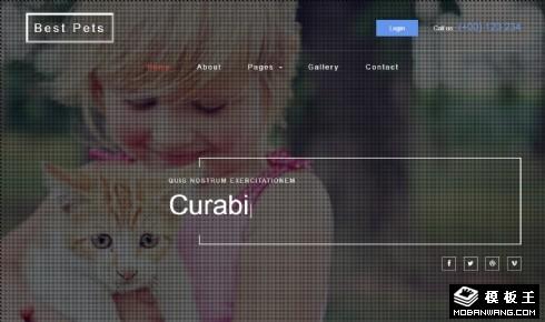 最爱宠物展示响应式网站模板