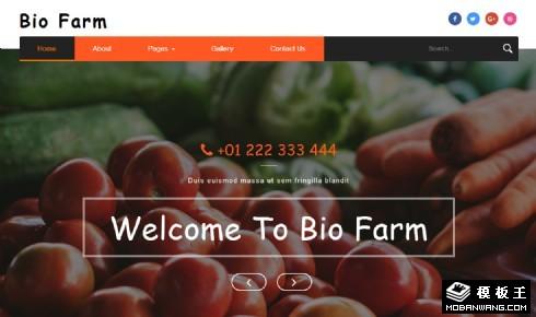 生态果蔬农场响应式网页模板