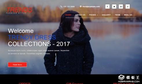 时尚设计展示响应式网页模板