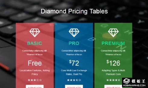 钻石会员价格列表响应式网页模板