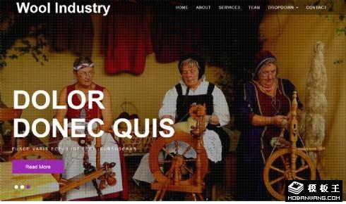 羊毛纺织制品响应式网页模板