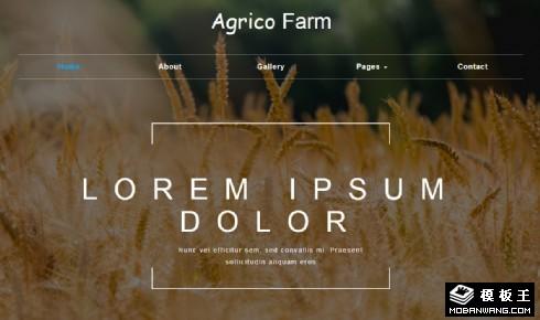 农业科技服务响应式网站模板