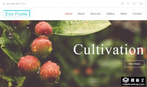 有机生态果园响应式网页模板