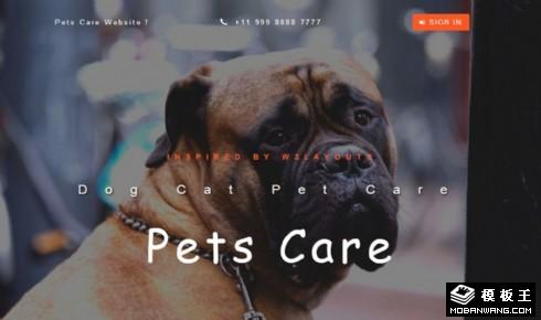 宠物护理服务响应式网站模板