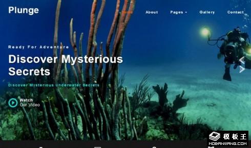 潜水爱好者响应式网站模板