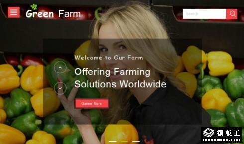 绿色果蔬农场产品展示响应式网页模板