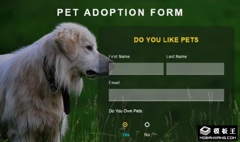 宠物收养申请表单响应式网页模板