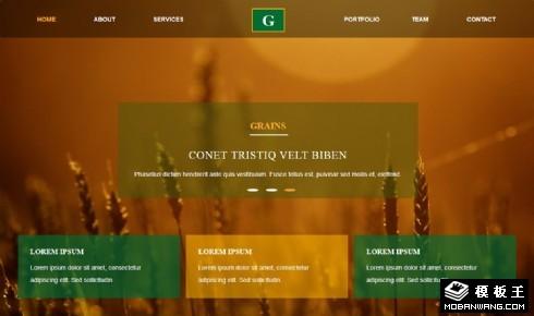 谷物种植采收响应式网页模板