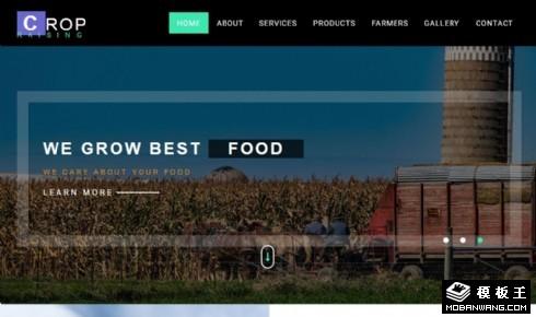 果蔬作物种植展示响应式网页模板