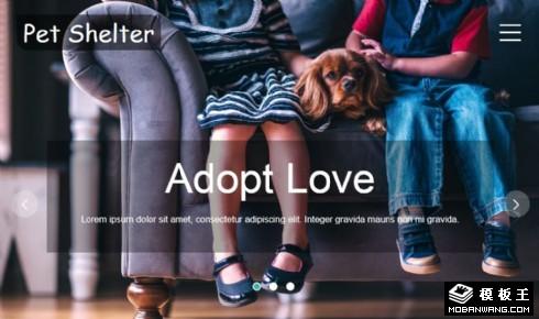 宠物收养所响应式网页模板