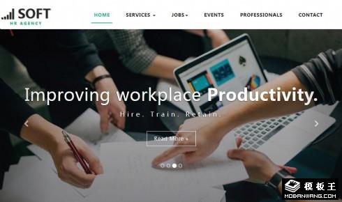 软件职业人才中心响应式网站模板