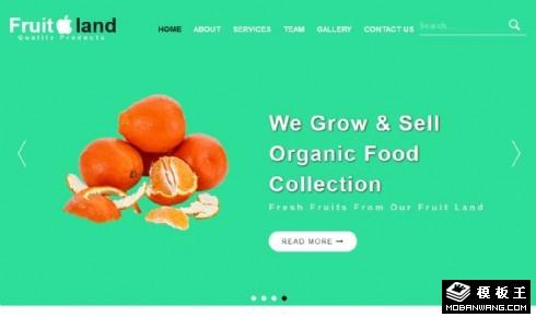 水果之乡产品介绍响应式网页模板