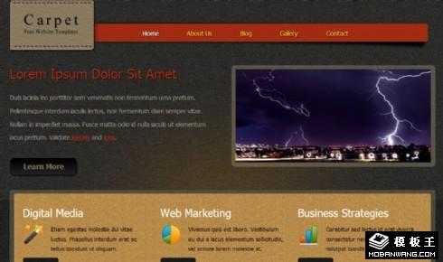 地毯背景业务介绍网页模板
