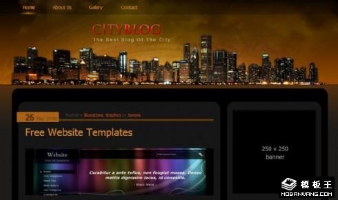 都市之夜日志动态网页模板