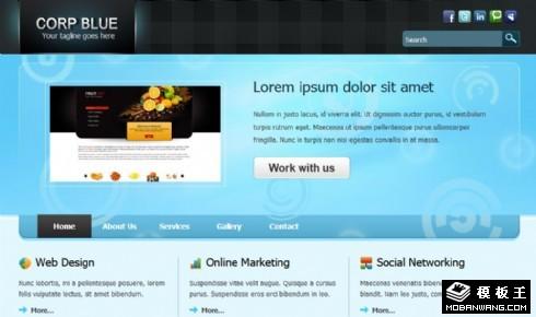 蓝色企业在线动态网页模板