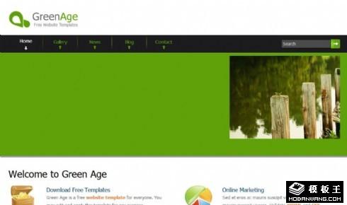 绿色服务信息展示网页模板