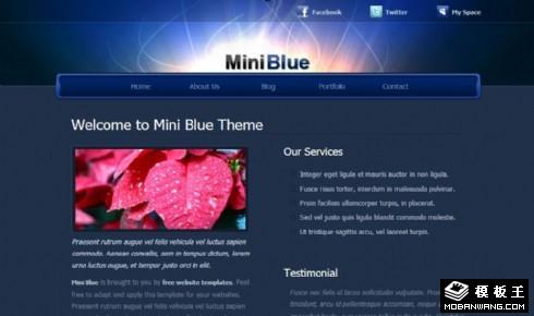 蓝光信息服务介绍网页模板