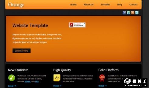 橙色项目服务展示网页模板