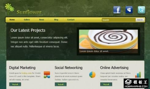 绿色项目展示动态网页模板