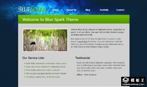 深蓝晶光服务信息网页模板