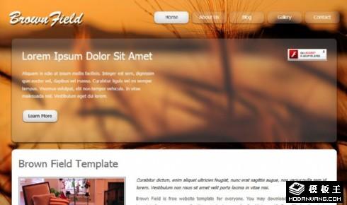 棕色地带动态网页模板