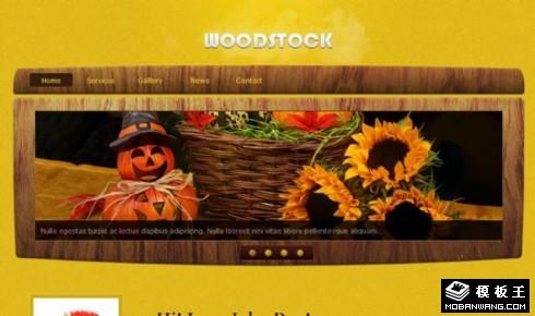黄色木质产品信息网页模板