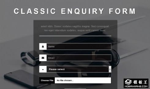 灰色查询表单响应式网页模板