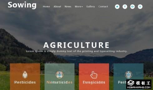 农业生态科学发展响应式网页模板