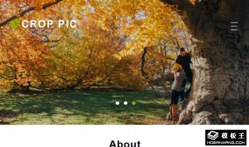 摄影相片展示介绍响应式网页模板