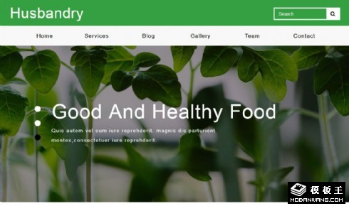绿色健康生态农业响应式网页模板