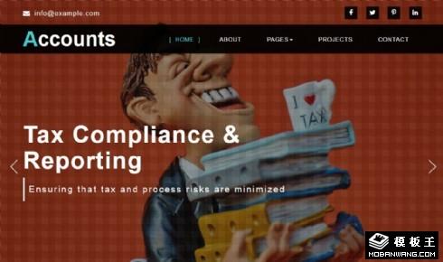 财务报表服务响应式网页模板