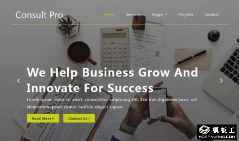 企业发展咨询服务响应式网页模板