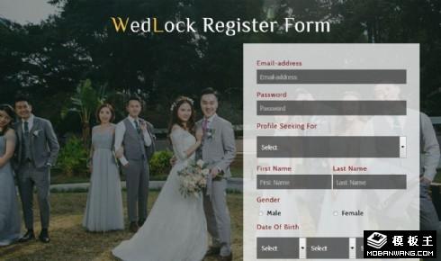 婚姻记录表单网页模板