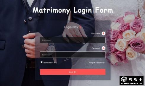 婚姻信息登录框响应式网页模板