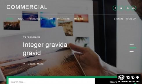 商业贸易服务展示响应式网页模板