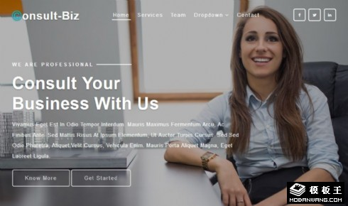 企业营销咨询服务响应式网页模板