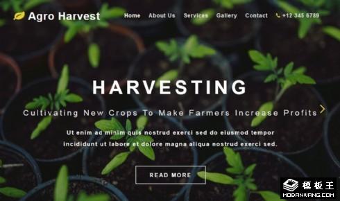 农业收成展示响应式网站模板