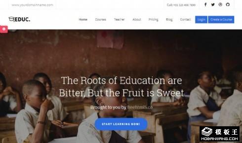 山区教育成果展示响应式网站模板