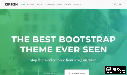 绿色产品信息展示响应式网站模板