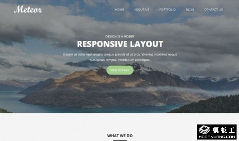 企业项目展示动态响应式网页模板