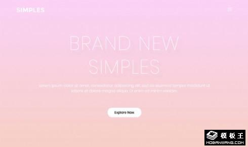 简约粉色品牌展示响应式网页模板