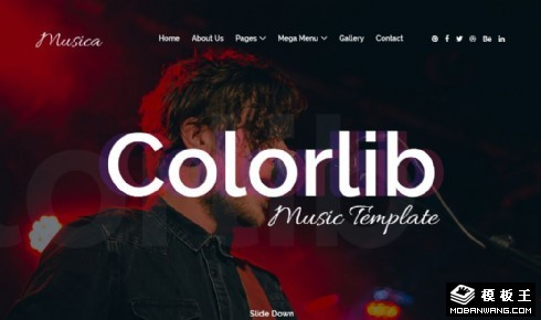 音乐表演活动现场响应式网站模板