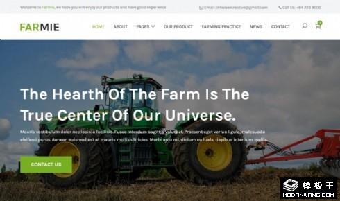乡村科技农场响应式网站乐虎国际手机