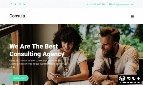 商业财富咨询机构响应式网页模板