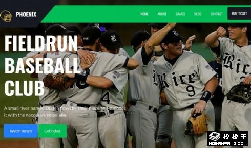 棒球联盟球队展示响应式网页模板