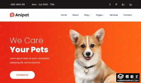 可爱宠物护理项目响应式网站模板