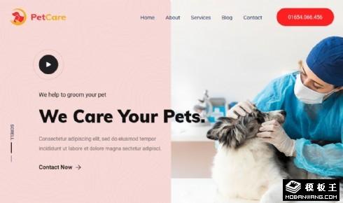 宠物医院护理响应式网页模板