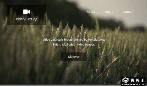 视频记录展示列表响应式网页模板