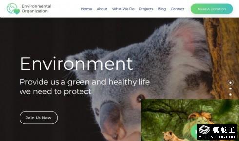 环境保护组织响应式网页模板
