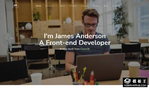 个人项目履历展示响应式网页模板